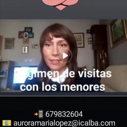 REGIMEN DE VISITAS HIJOS E HIJAS MENORES